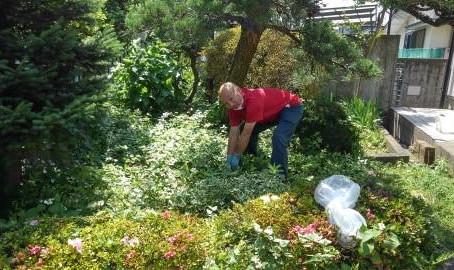 草むしり作業を助っ人しました!