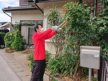 木の剪定・草むしり作業を助っ人しました!