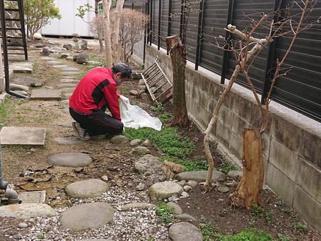 庭の草むしりを助っ人しました!