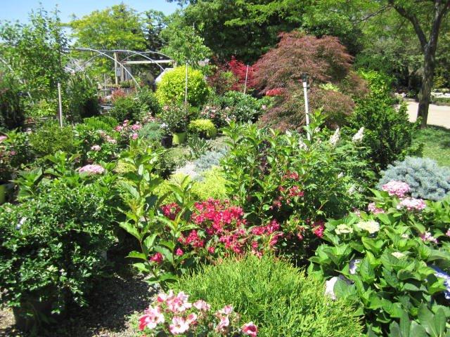 Johnston's Garden Center - Open to the Public April - November