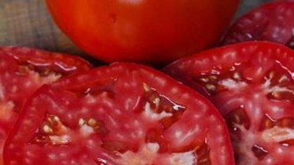 Tomato 'Better Boy' BETTER BOY TOMATO