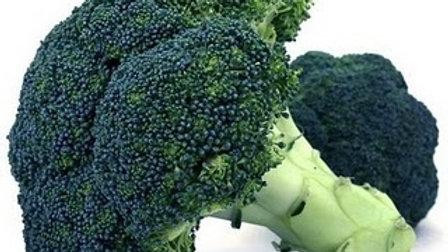 Brassica oleracea italica 'Waltham 29' WALTHAM 29 BROCCOLI