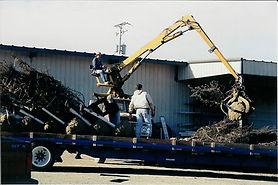 Loading with Log Truck.jpg