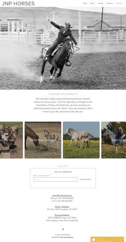 JNP Horses - Home