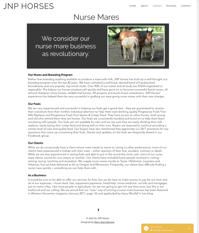JNP Horses - Nurse Mares