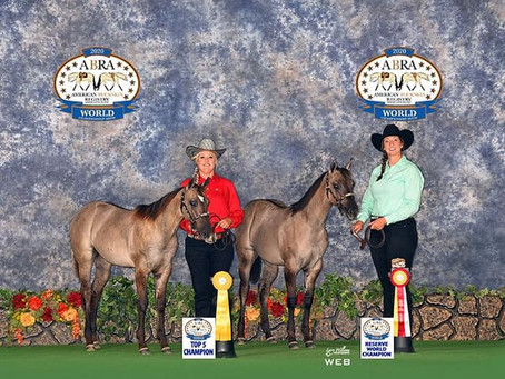 American Buckskin Registry Association (ABRA) World Show