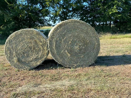 Know Your Hay