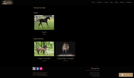 Corbett Creek Ranch - Horses For Sale