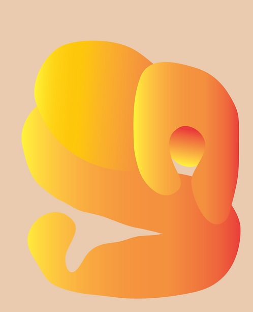 Mr Orange  PR310