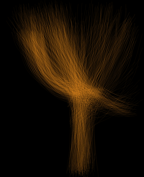 Flame Tree  LD074