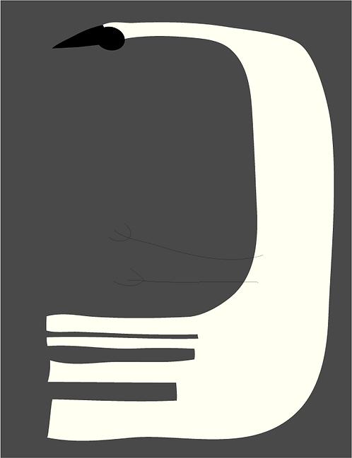 Swan   AN041