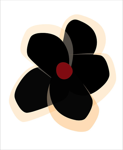 Black Orchid   FL025