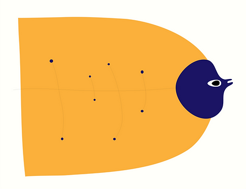 Star Fish AN094