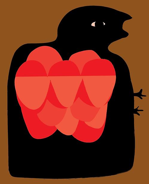 Blackbird  AN116