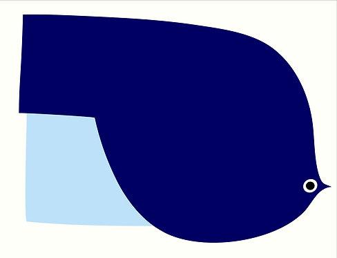 Blue Quay   AN055