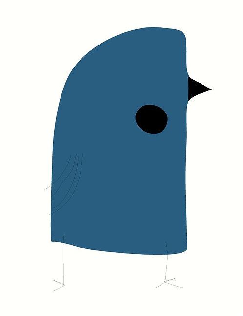 Blue Budgie   AN021