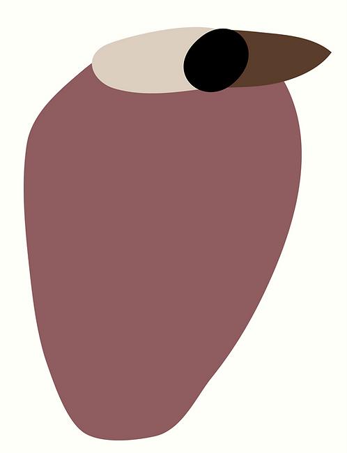 Kookaburra  AN090