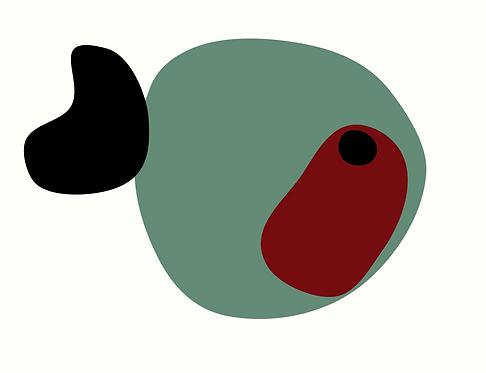 Red Eye. AN095