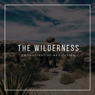 The Wilderness - an imaginative prayer reflection