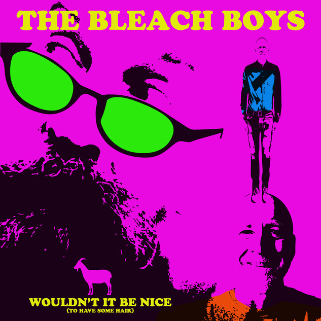 BLEACH BOYS