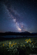 Waterton Milky Way
