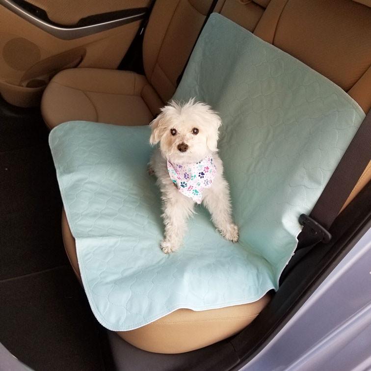 Aqua 34x36 car seat protection.jpg