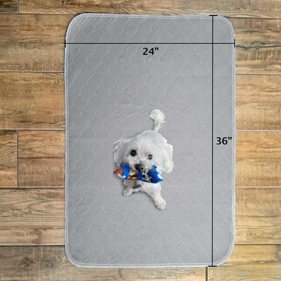 Puppy-pee-pad-reusable-dimensions-24x36.