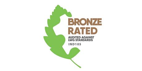 1200 x 600 Bronze.png