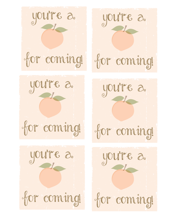 Six and Southern Birthday Party Tags