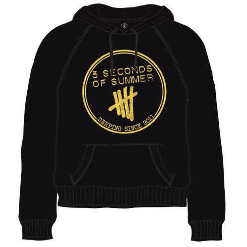 5 Seconds Of Summer Unisex Pullover Hoodie: Derping Stamp