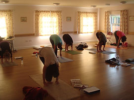 A group yoga class, people doing forward bend