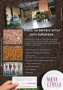 Folheto Mara Capela