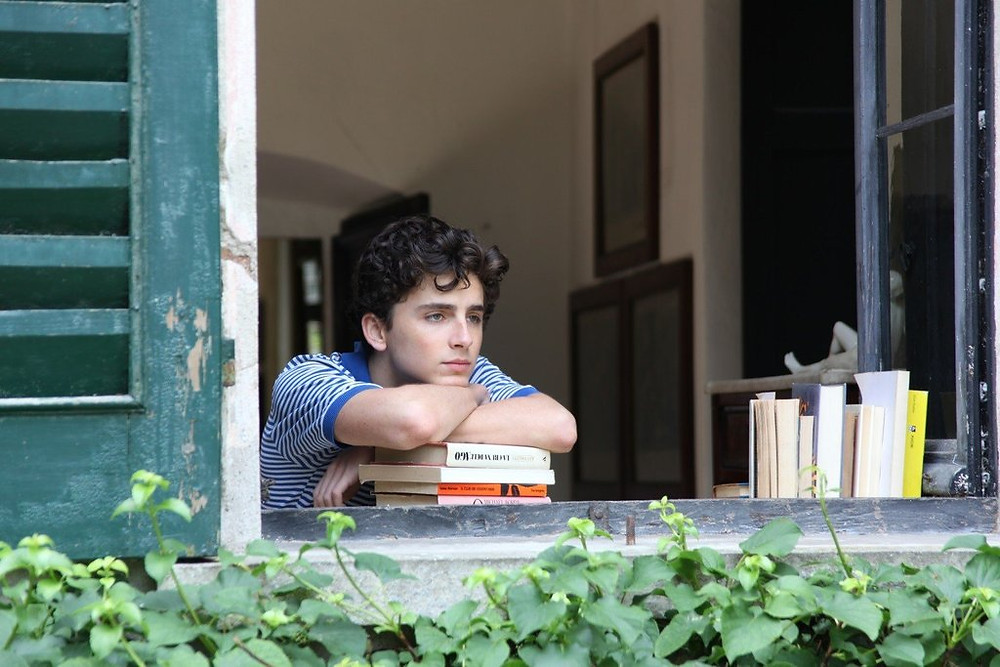 Timothee Chalamet has been nominated for best actor at the Oscars for his role in Call Me By Your Name