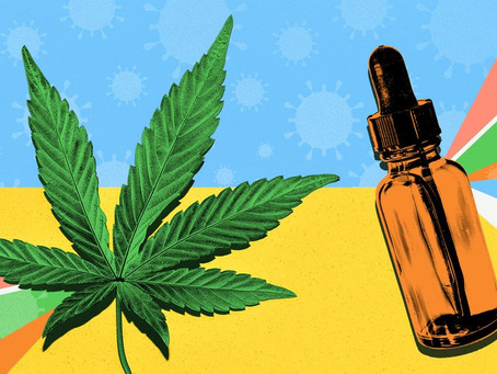 Can CBD Protect You From COVID-19?