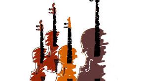 More Than Music: Haydn