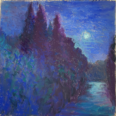 Cypress Nocturne