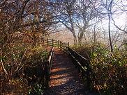 Ynys Dawela Nature Park in Brynamman Wales
