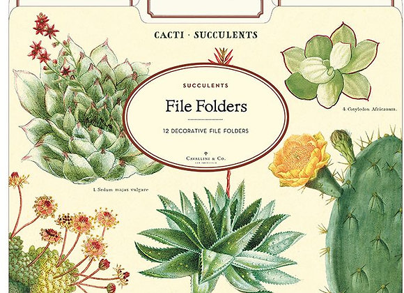 SUCCULENT File Folders (Set of 12)
