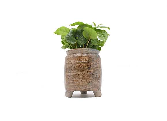 Tall 3 legged can planter