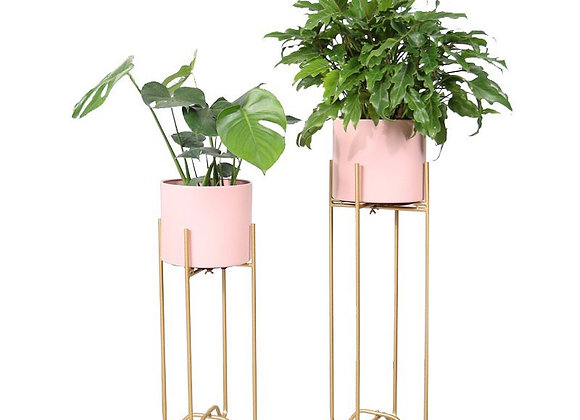 Plant Holder + Stand