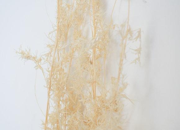 Alfa grass SB bleached
