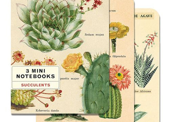 SUCCULENT Mini Notebook (Set of 3)