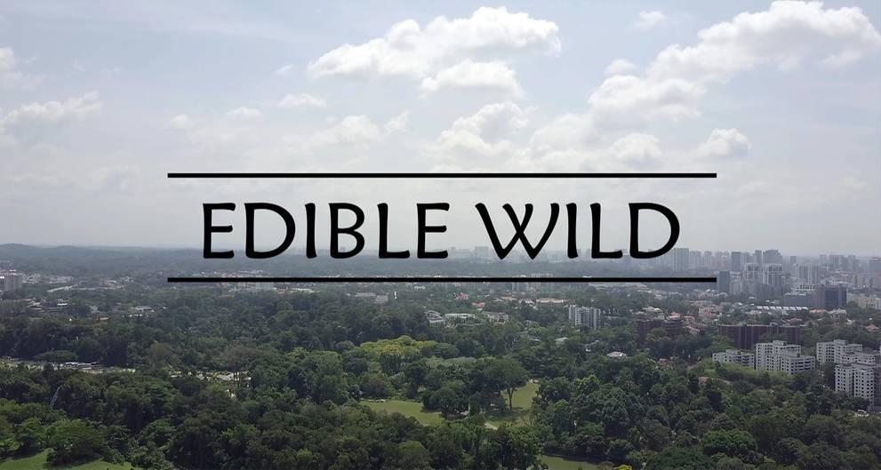 Edible Wild