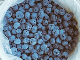 Blue Berries pic.PNG