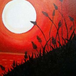 Moonlit Grass