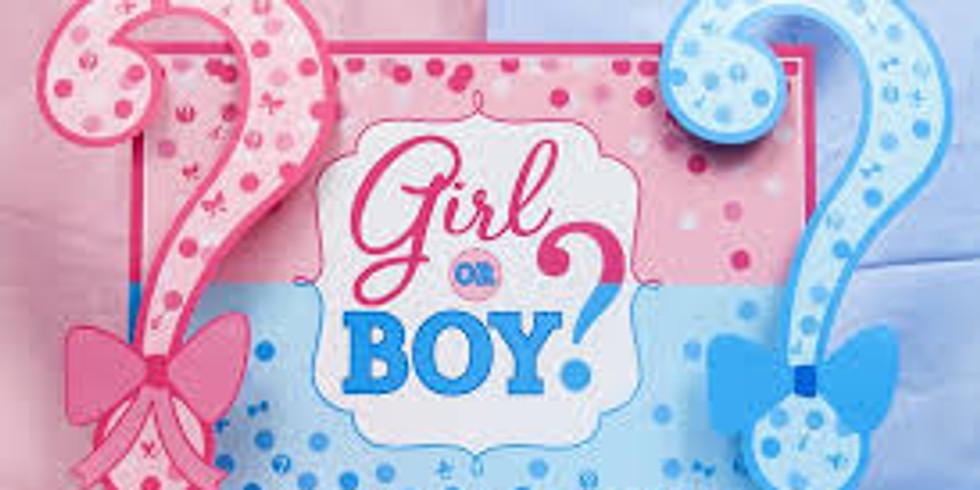 Kenney Gender Reveal