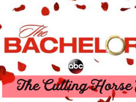 The Bachelor: Cutting Horse Edition