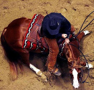 15 Truths for the Cutting Horse Enthusiast