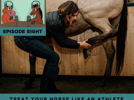 The Cutting Edge, Ep 8 - Treat Your Horse Like An Athlete with Brigitte Meyer of Vitality Equine