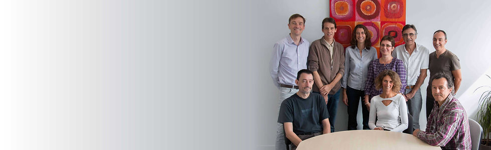 Artics team